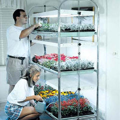 3-Tier/12-Tray Grow Light Plant Stand (T-12)