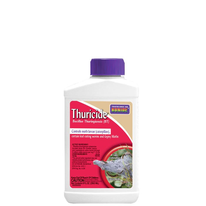 Bt For Caterpillars (Thuricide) 8 oz.
