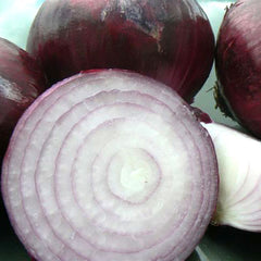 Onion Red Candy Apple F1