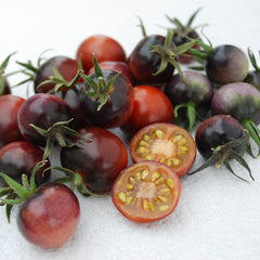 Tomato Indigo™ Blue Berries Organic