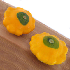 Squash Y-Star Patty Pan F1 Organic