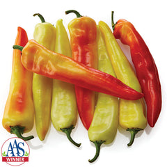 Pepper Sweet Sunset F1