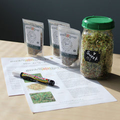 Garden Therapy® Mason Jar Sprouts Kit