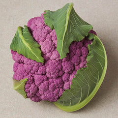 Cauliflower DePurple F1