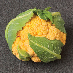 Cauliflower Flame Star F1