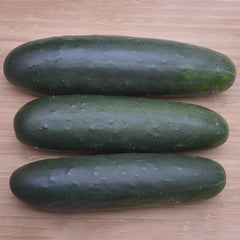 Cucumber Brickyard F1