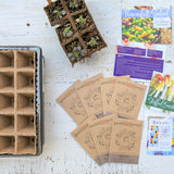 Garden Therapy® Edible Flowers Kit
