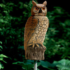 Dalen Bird Scare Realistic Owl with Rotating Head