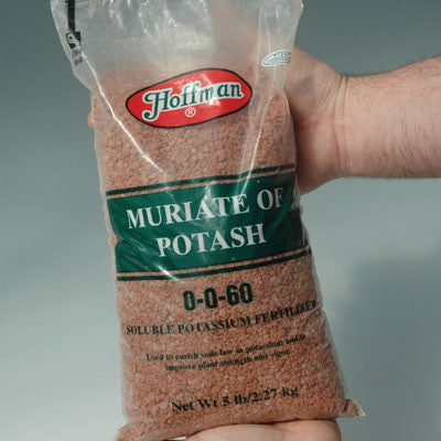 Muriate Of Potash