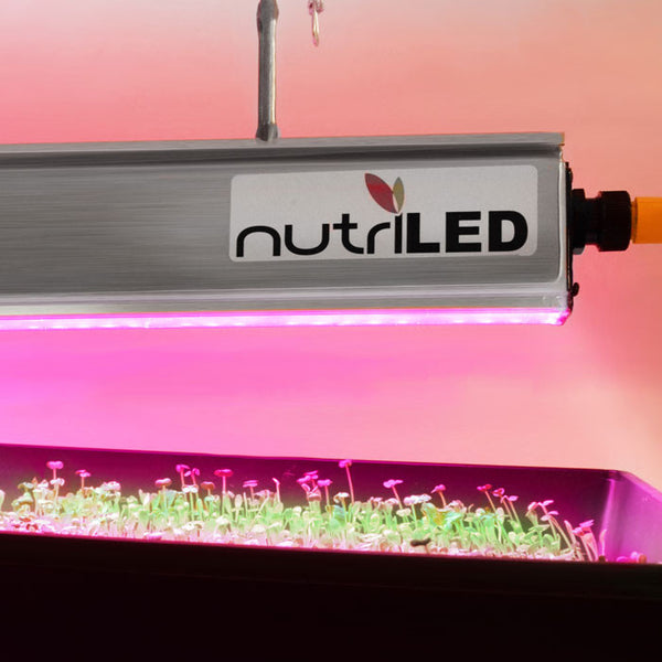 NutriLED 4 Ft. Fixture