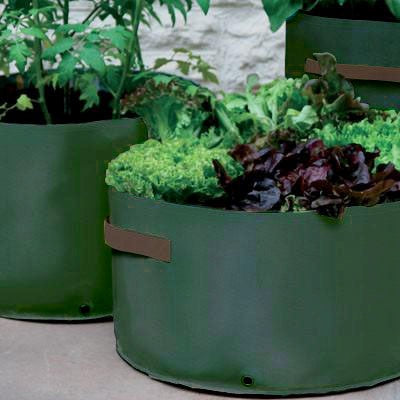 Vegetable Patio Planters 3 Pack