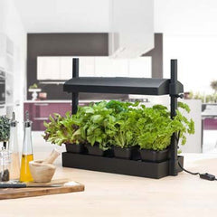 Sunblaster Micro Grow Light Garden - Black