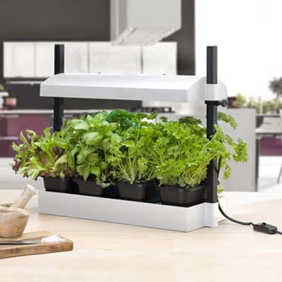 Sunblaster Micro Grow Light Garden - White