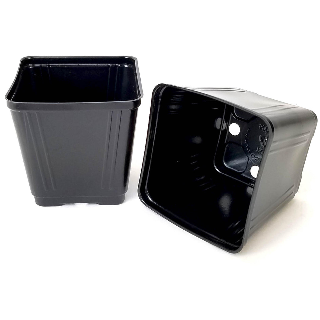 "rEarth 3.5"" Square Pots"