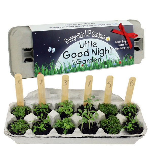 Sunny Side Up Little Good Night Garden Kit