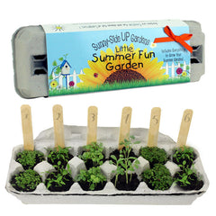 Sunny Side Up Little Summer Fun Garden Kit