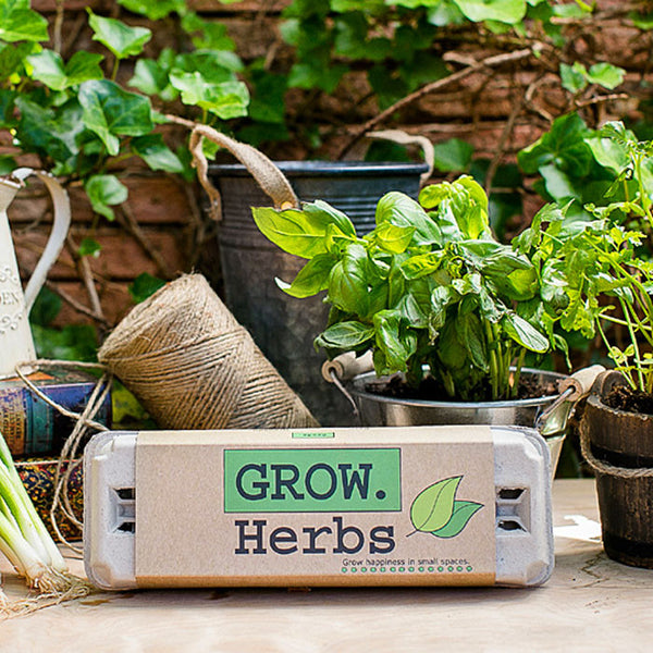 Grow Gardens Grow Herbs Kit