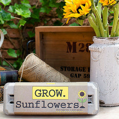 Grow Gardens Grow Sunflowers Kit