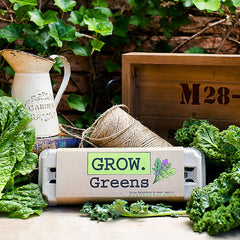 Grow Gardens Grow Greens Kit