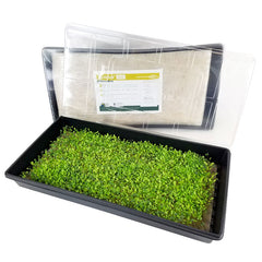 Biostrate Felt Micro Greens Kit
