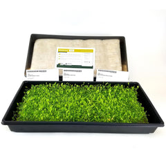 Biostrate Micro Greens Collection