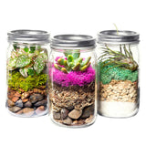 SuperMoss Portland Terrarium Jar Kit