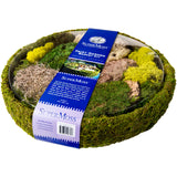 Supermoss Round Fairy Garden Basket Kit