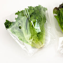 "Hydroponic Lettuce Sleeves 14"" x 9"" x 5"""