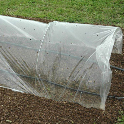 Row Cover Clear Punched 4-1/2' x 500'