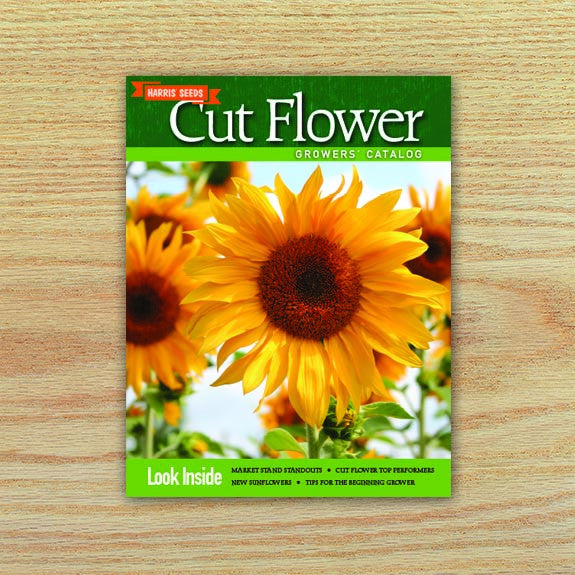 harris seeds cut flower growers digital catalog