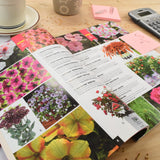 2017 Ornamental Growers Plug & Liner Catalog (FREE)