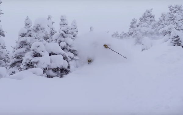 Video: Parlor Pro Chest Deep in Stella Storm