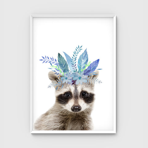 //BOHO RACCOON//