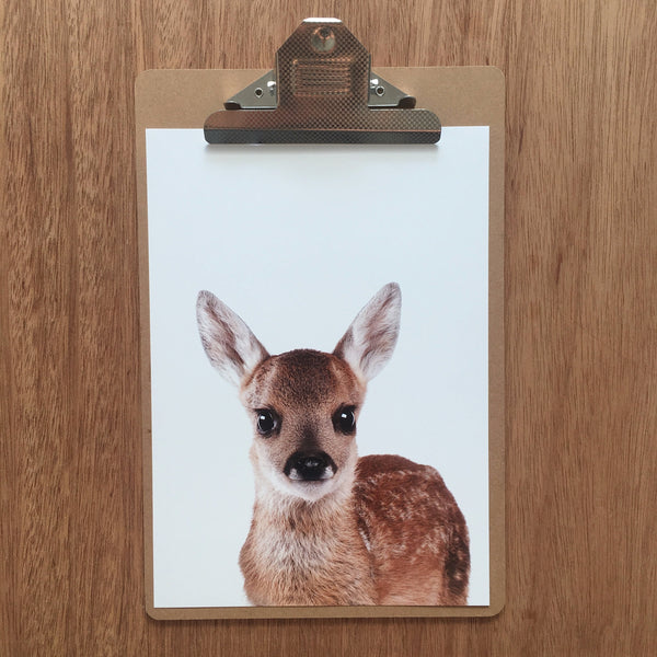 //DEER FRIEND//