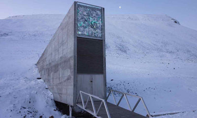 CBS News on the Svalbard Global Seed Vault