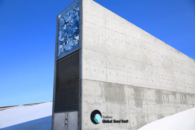 "Svalbard's ""Doomsday Vault"" 10 years"