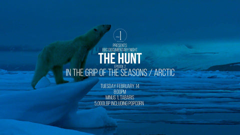 svalbard and arctic life movie recommendation
