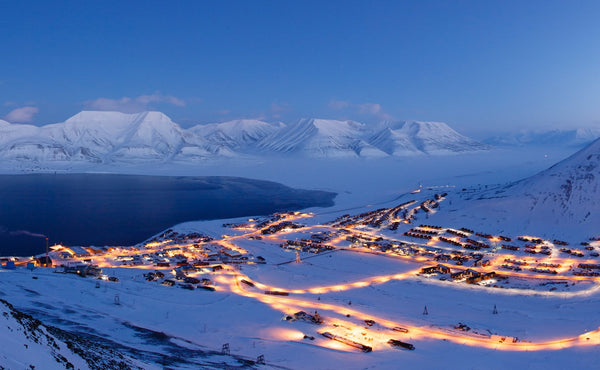 8 must-try food and beverages in svalbard