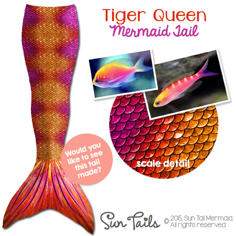 Tiger Queen Tail