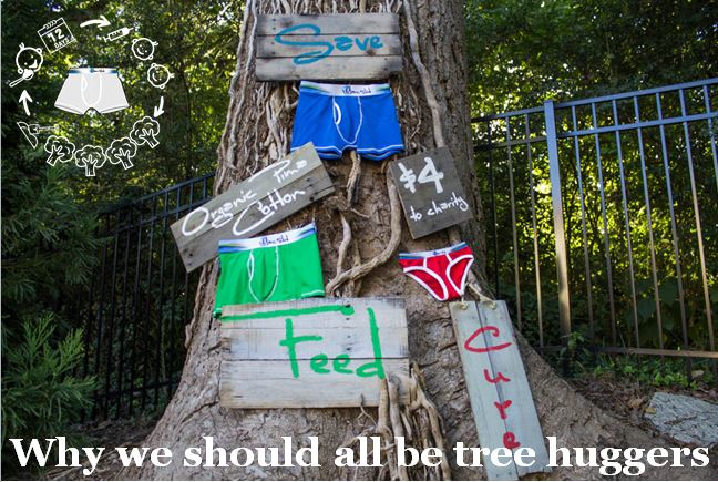 Why we should all be tree huggers: How trees benefit us