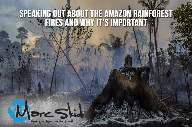 People who are speaking out about the Amazon Rain-Forest fires and why it's important