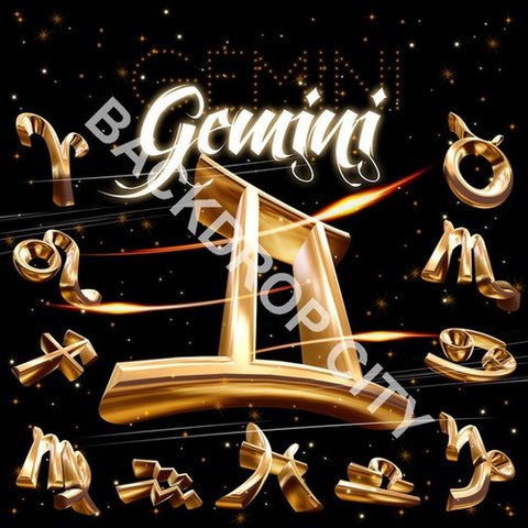 Gemini Computer Printed Backdrop