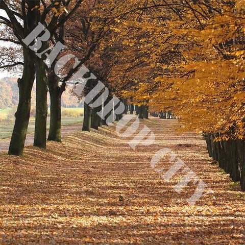 Tree Rows in Fall Computer Printed Backdrop