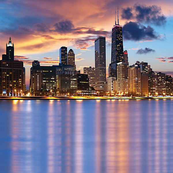 Chicago Lakefront Computer Printed Backdrop