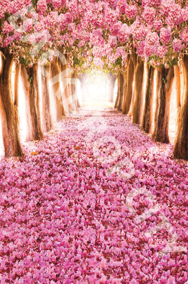 Golden Rose Path Backdrop