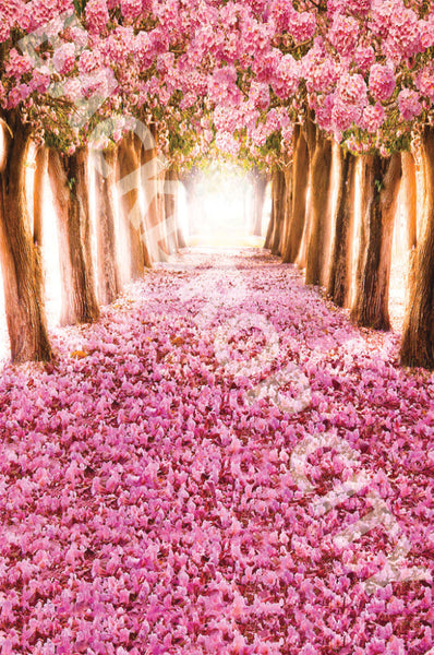 Golden Rose Path Digital Image