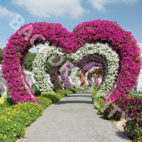 Heart Garden Path Backdrop