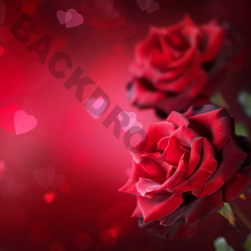 Valentine Rose Abstract Computer Printed Backdrop - Backdrop City