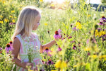 Nature Journaling: How to Get Started with Your Kids