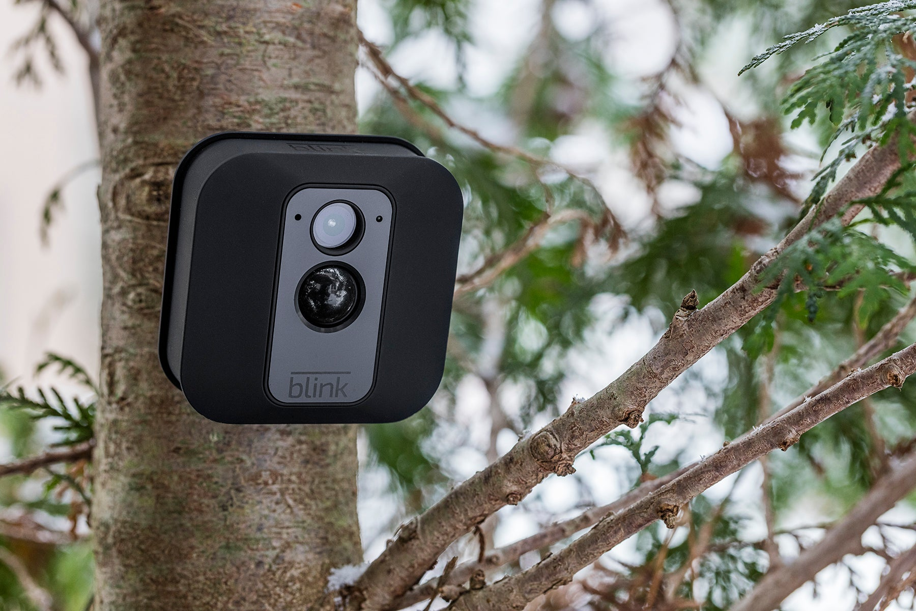 Share Blink footage for a chance to win a 2x camera Blink XT system worth £239!